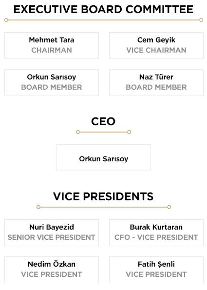 Executive Board Steel 2020